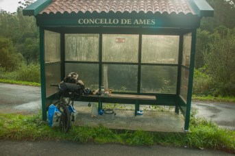 cycle-in-restaurant