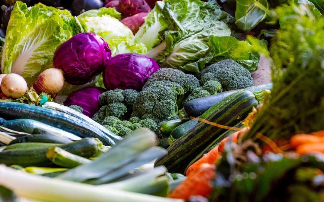 Late Summer Veggie Garden Care & Fall/Winter Edibles