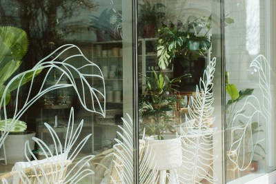 Photo of our plant window art at our Brideport location