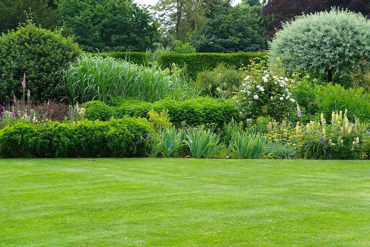 Hedgerows Gardening