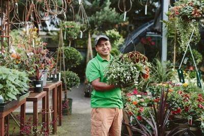 Visit Dennis' 7 Dees Garden Center in Lake Oswego