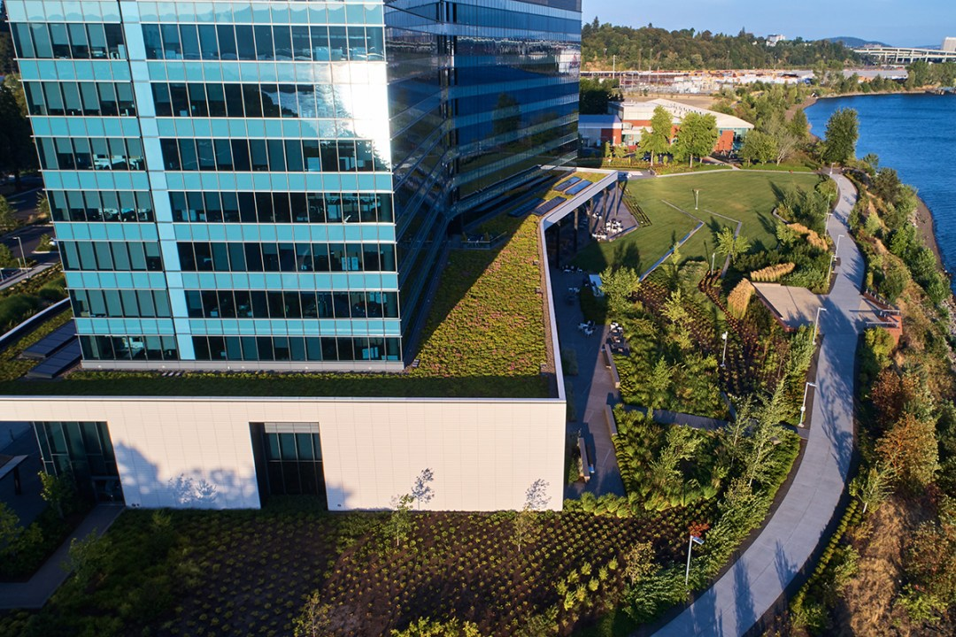 drone image of diamler landscape design and green roof we completed