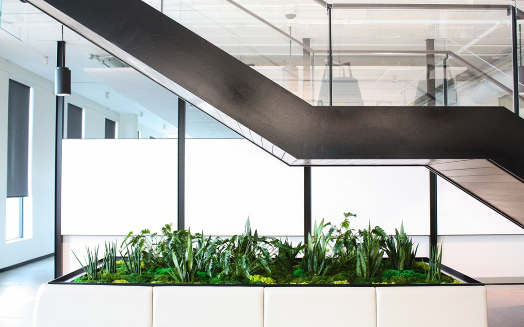 The Importance of Green in the Workplace