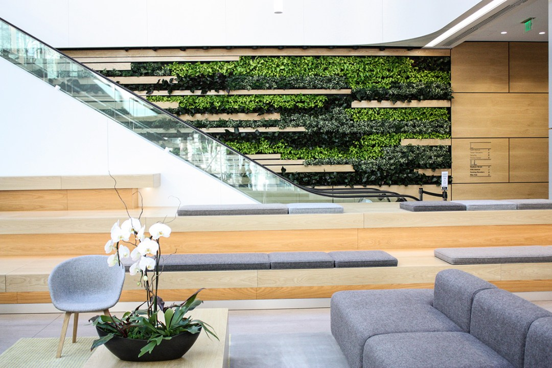 Showcasing a living wall and orchid display