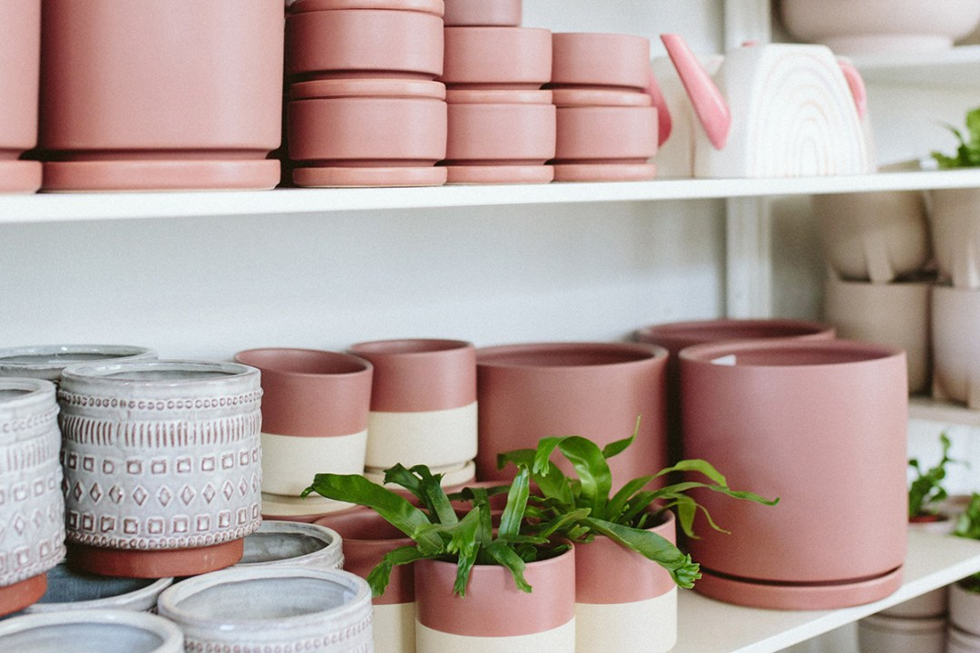 Pink Pots and pink rainbow watering can