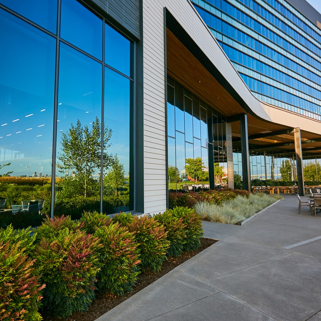 Commercial Landscaping Project