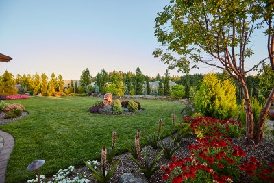dream home yard with plantings