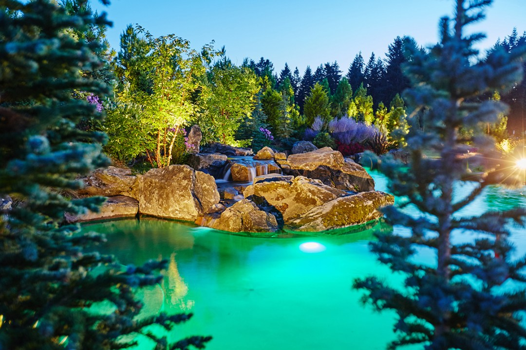 natural pool in residential landscape