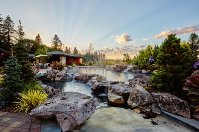 dream home natural pool with boulders