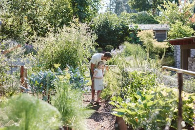 father and daughter in vegetable garden