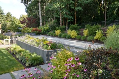 residential landscape plantings and bocce ball court