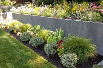 residential landscape border plantings and retaining wall