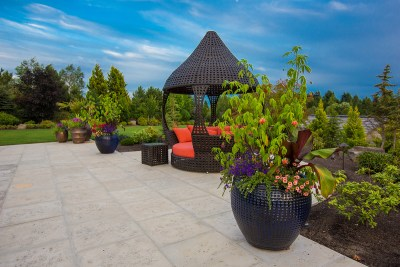 container plantings in landscape