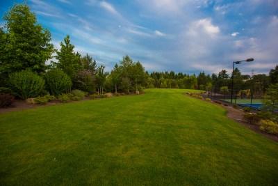 large lawn area in landscape