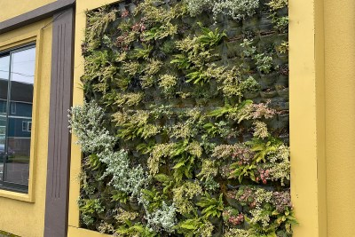 outdoor living wall