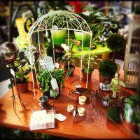 Fairy Gardens, Mini Gardens & Mini-scapes