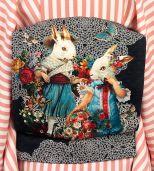 rabbits obi