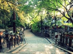 Walking in Nara