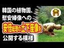 【韓国】安倍総理が慰安婦像へ土下座する像を公開する模様の画像