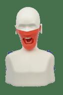 tandheelkundige simulator oefenpop fantoom hoofd tanden tand model opleiding medisch model