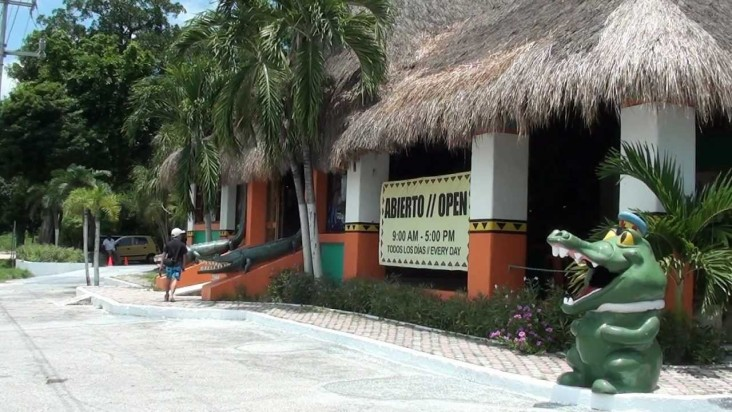 Visit Crococun Zoo on your dental implant vacation in Cancun