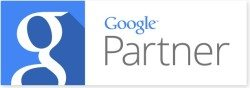 dental revenue google partner