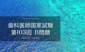 第103回 歯科医師国家試験:B問題