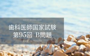 第95回 歯科医師国家試験:B問題