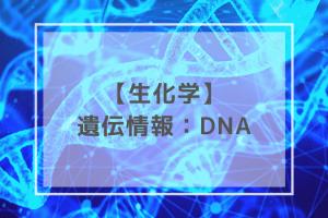 生化学:DNA
