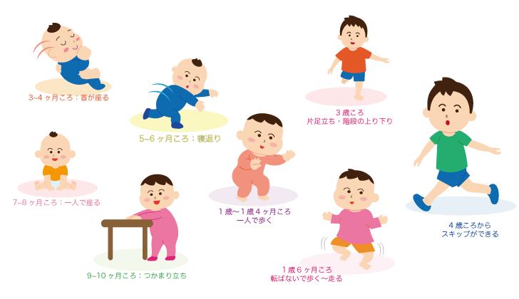 運動の発達