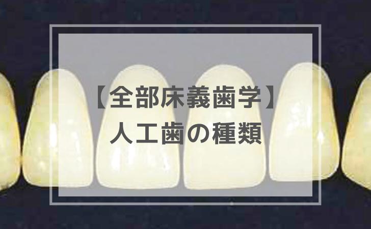 人工歯の種類