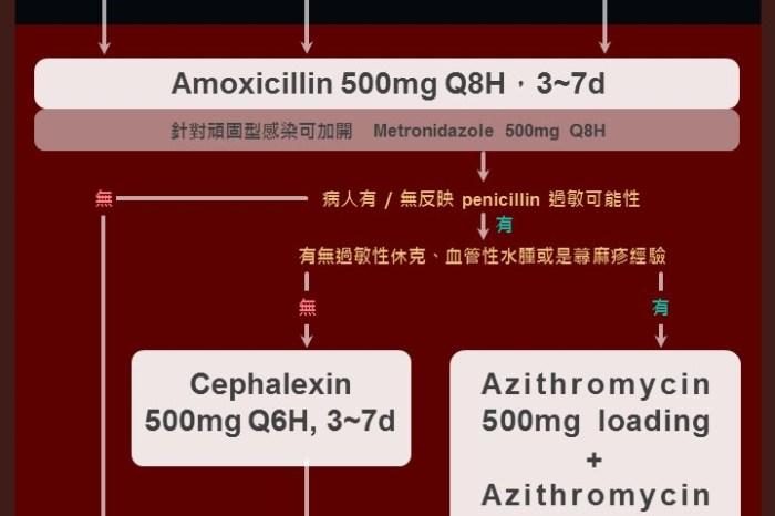 抗生素新指南