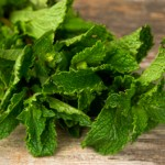05experts-all-natural-mint