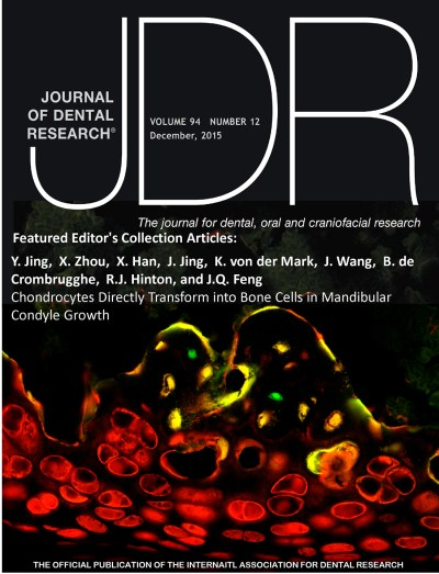 The December 2015 cover of the JDR, which won the Cover of the Year award