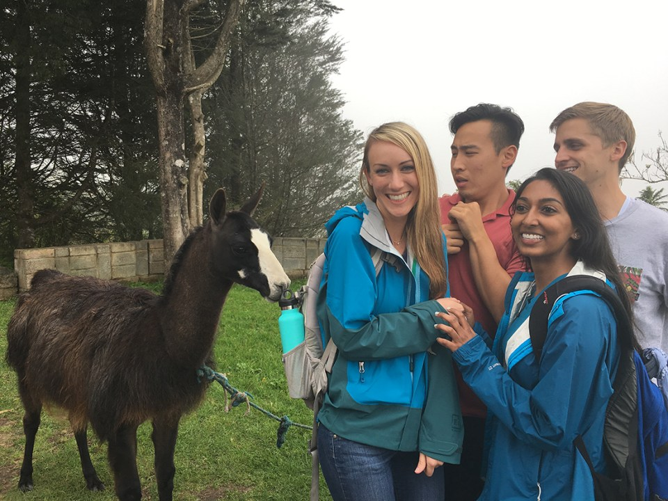 Four students stand, smiling, near a llama