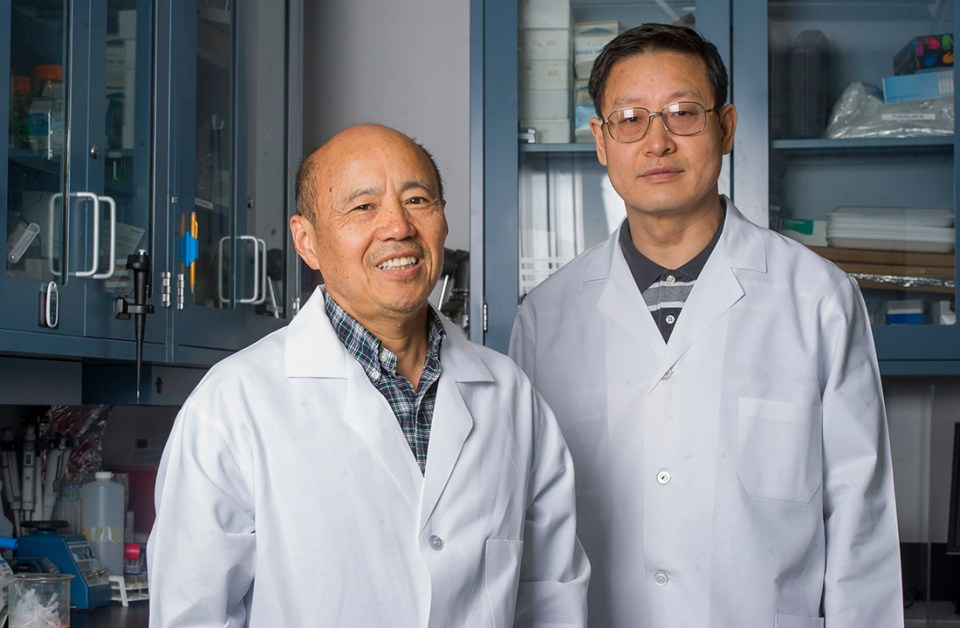 Presidential Impact Fellows Dr. Jerry Feng and Dr. Chunlin Qin