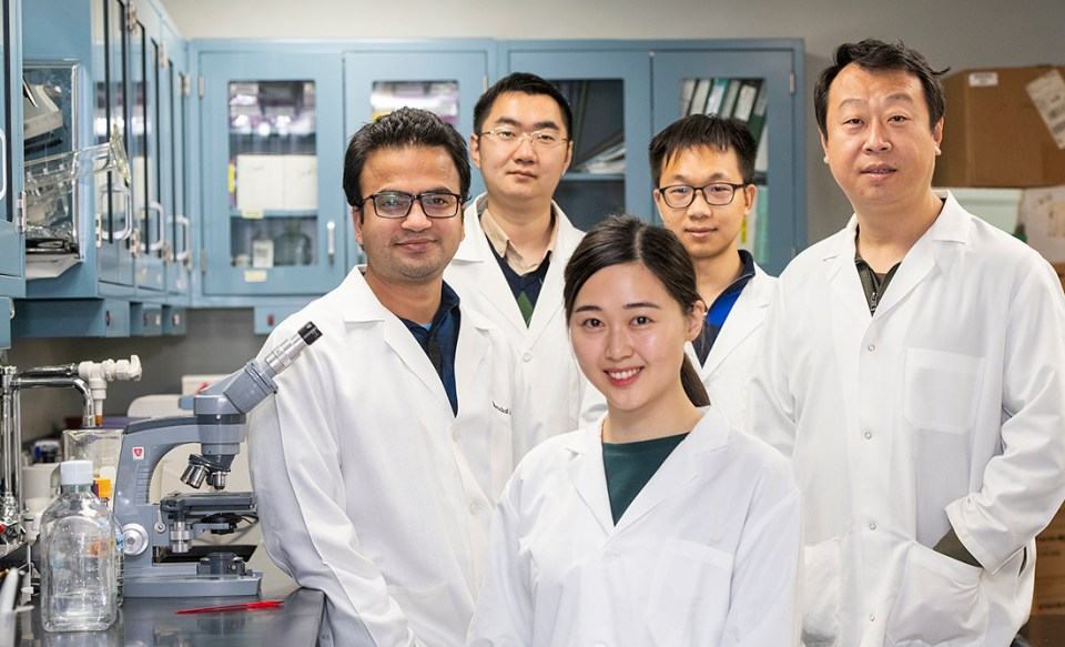 Dr. Xiaofang Want Research Team