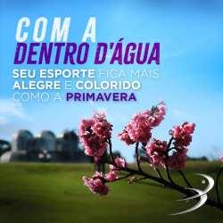 Uniformes personalizados Curitiba – Primavera