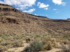 Mojave National Preserve - Photo by Jim
