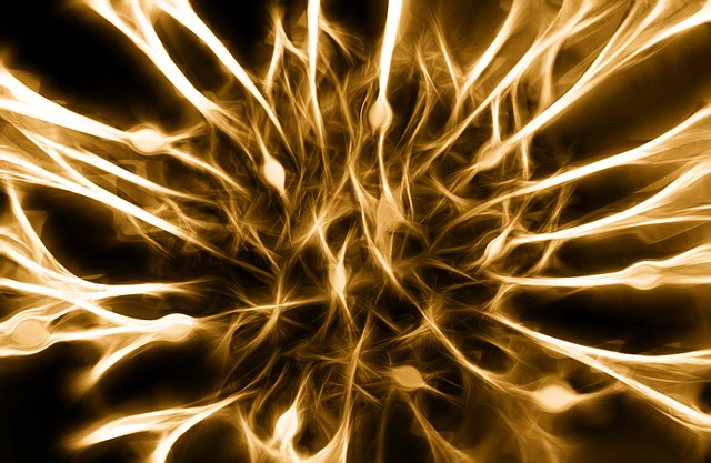 Bio-Hacking Your Nervous System Naturally