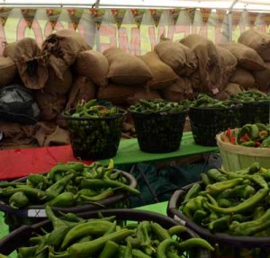 Baskets of Fresh Chiles at Taste of Chili