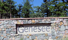 Genesee Homes For Sale