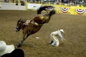 00-cowboy-IMG_1556