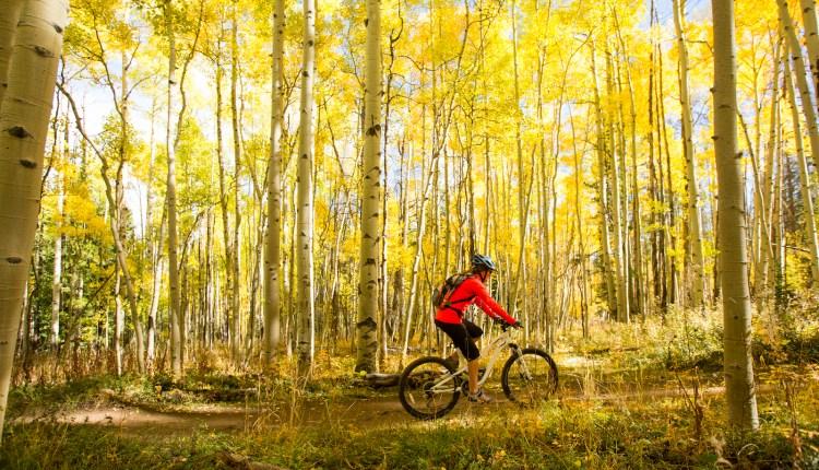 Fall-Mountain-Biking.jpg