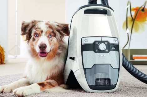 Miele Blizzard CX1 Cat and Dog Bagless Canister Vacuum