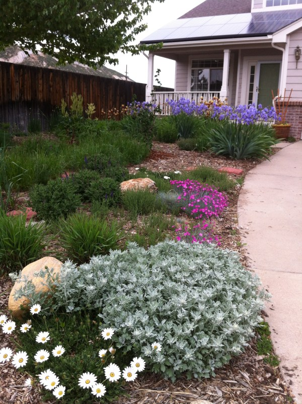 xeriscaping mile high water talk