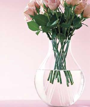 rose-vase_300