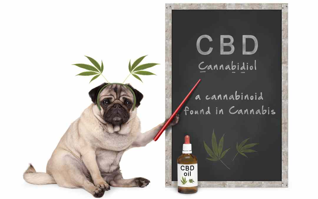 CBD Product; Here Comes the BOOM!