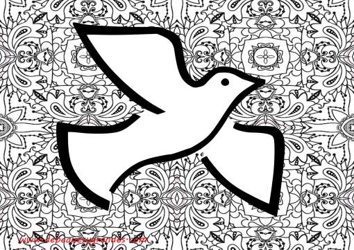 paloma de la paz con fondo