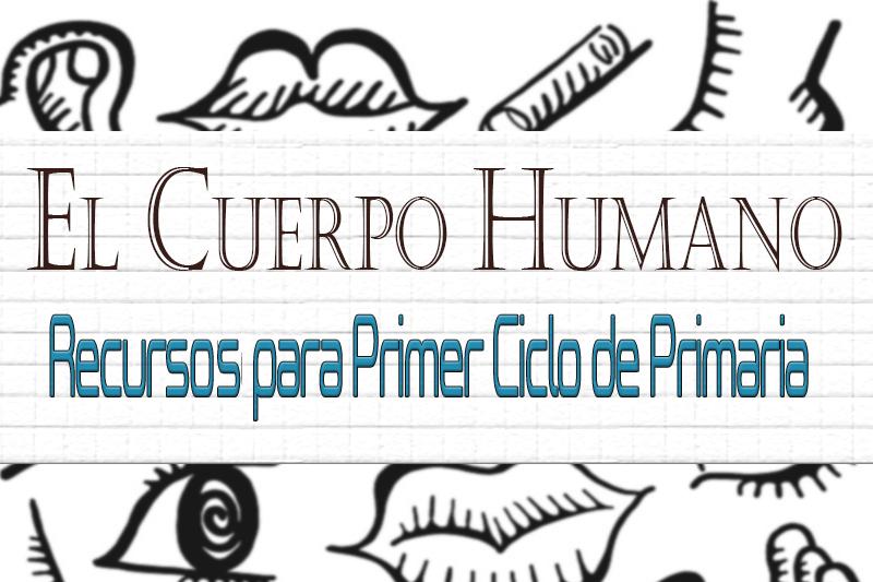 cabecera el cuerpo humano